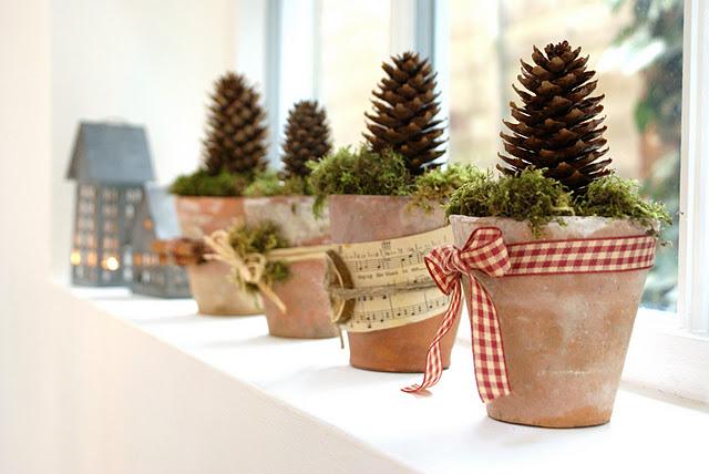 Li trovate ovunque, piccolissimi vasetti di coccio, una pigna ed un pò di muschio. Dopo l'ospite potrà portarlo a casa come piccolo gift.