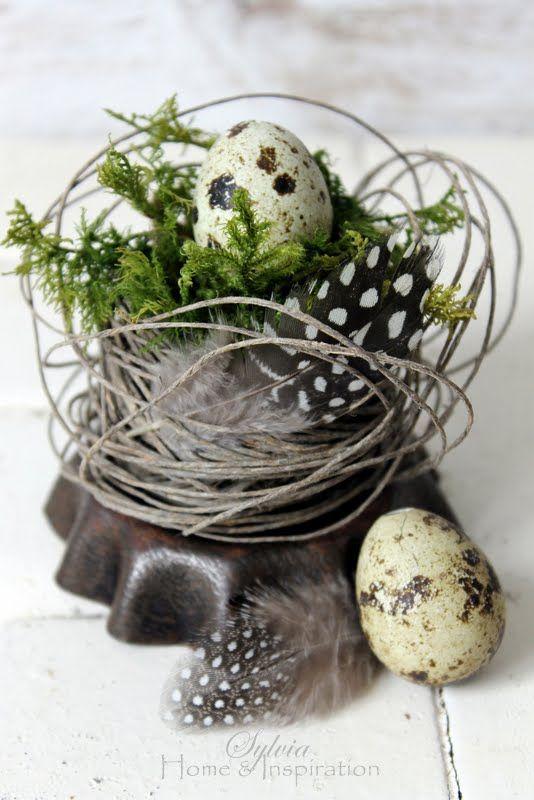 Che idea geniale usare uno stampino da crostata come base del nido