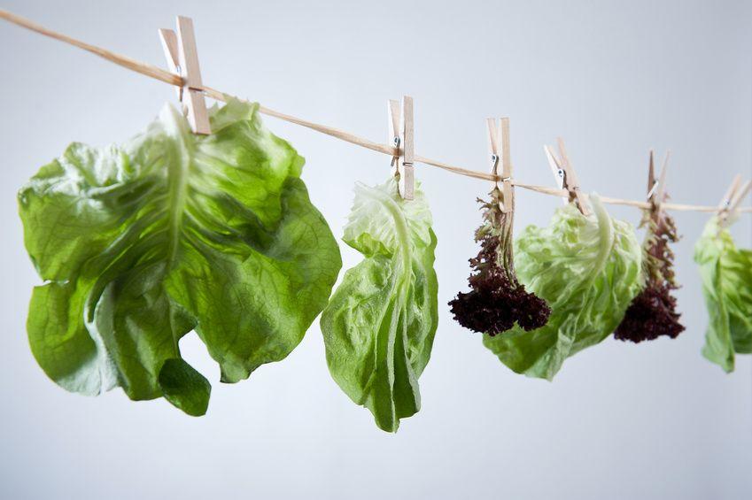 Salat Wäscheleine